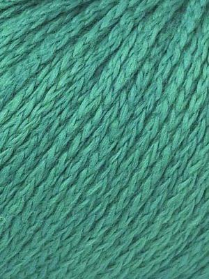 Seaweed 581
