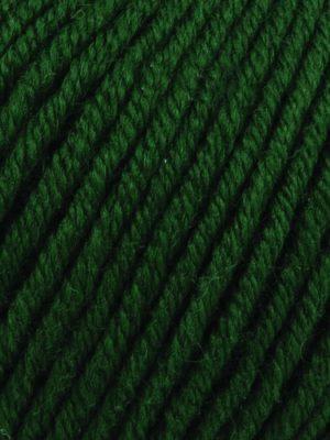 Grass 154
