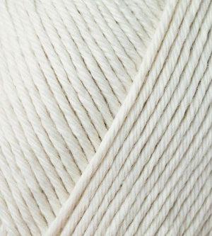 Seashell 466