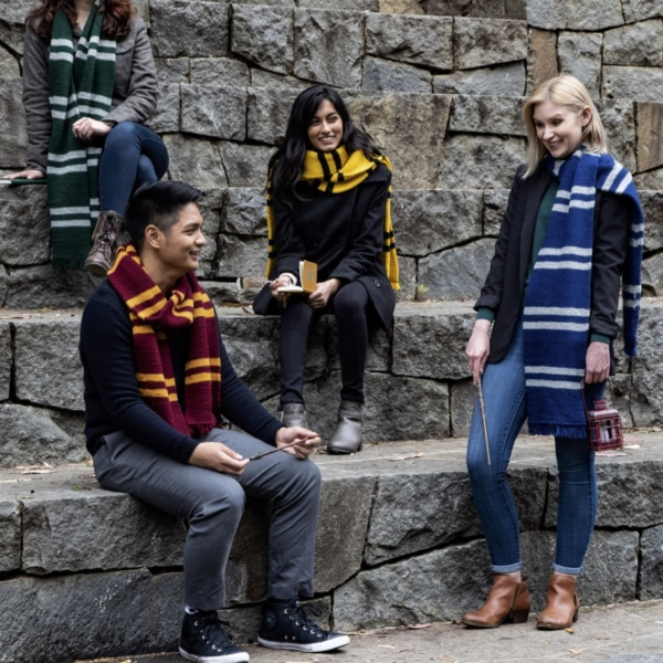 5 Hogwarts House Scarves Five